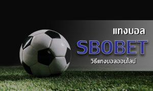 แทงบอล SBOBET เว็บพนันบอลเต็ง บอลสเต็ป บอลสูงต่ำ ที่ให้ราคาดีที่สุด